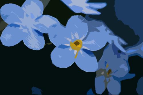 Aeovel's Flower